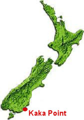 Kaka POint Map - NZ